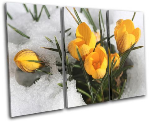 Flowers In Snow Floral - 13-1982(00B)-TR32-LO
